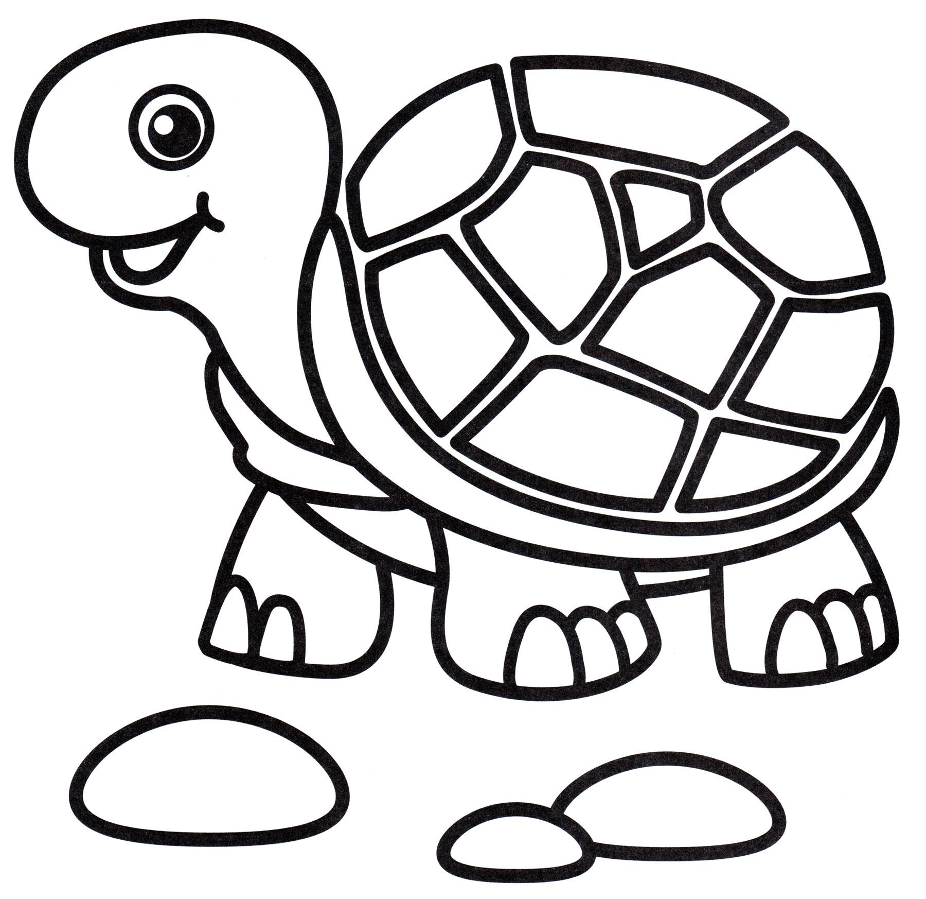 Раскраска Радостная черепаха, распечатать бесплатно или ...