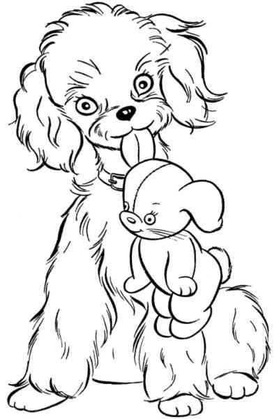 Раскраска Собака с игрушкой, распечатать бесплатно или скачать