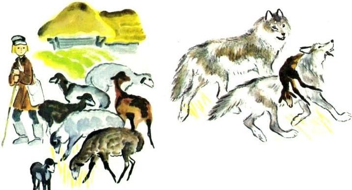 Как волки учат своих детей | Изображение - 1