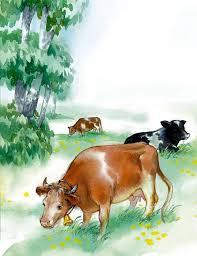 Коровка   Изображение - 1