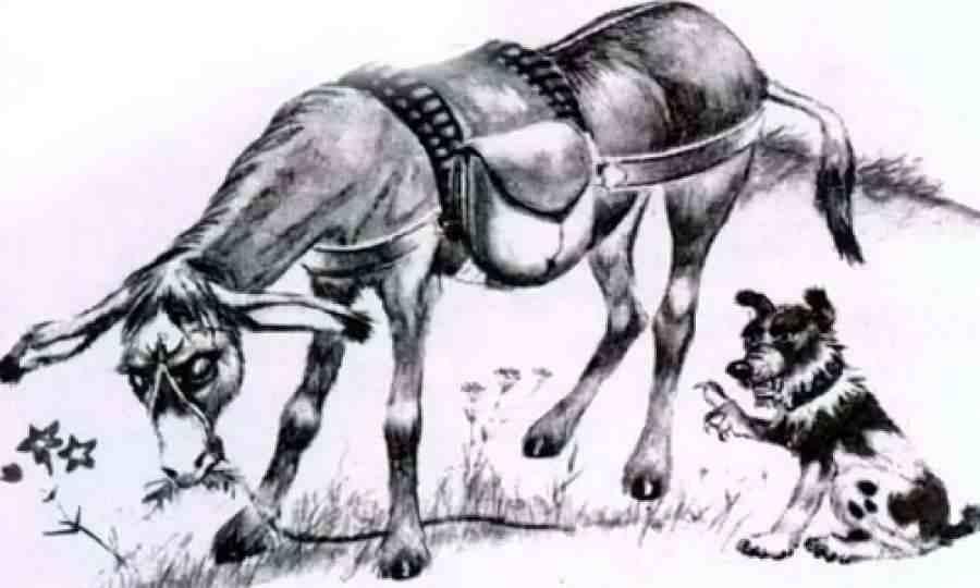 Собака и хозяин | Изображение - 1