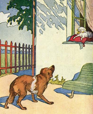 Две Собаки | Изображение - 1