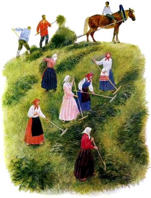 бабы и мужики убирают урожай
