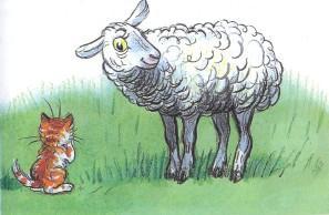 котенок кот и овца овечка