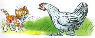 котенок кот и курица