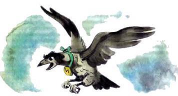 ворона Кагги-Карр