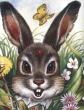 Хитрющий зайчишка
