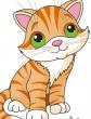 На ночь про котенка Мяу, Сказка