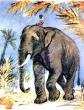 Царь и слоны