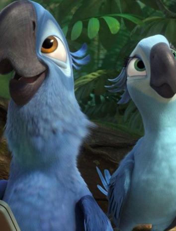Два попугая, Сказка