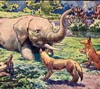 Шакалы и слон, Басня