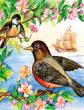 Птичий король, Сказка