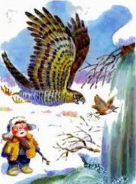 Сумасшедшая птица, Рассказ