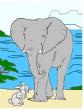 Как заяц выручил слона, Сказка