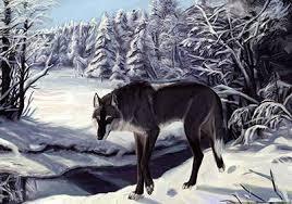 За волками, Рассказ