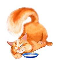 У кота ли, Стих