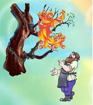 Сказка Глупый крестьянин и умная птица, Немецкая народная сказка