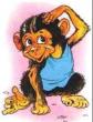 Про обезьянку, Рассказ
