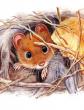 Мышонок Пик, Рассказ