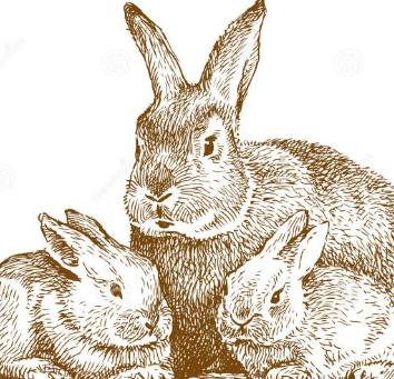Кролики, Басня