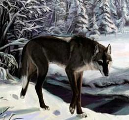 Сказка Бедный волк, Салтыков-Щедрин Михаил