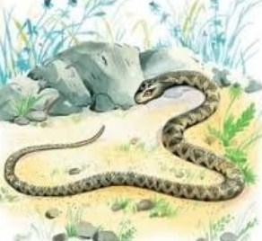 Сказка Змея, Крылов Иван