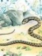 Змея, Басня
