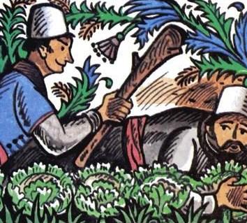 Сказка Младший брат, Албанская сказка