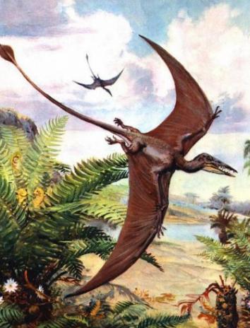 Сказка о летучем динозавре, Максим Наумов