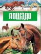 Лошади, Рассказ