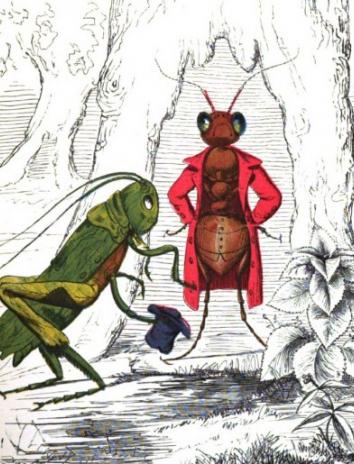 Сказка Кузнечик и муравьи, Эзоп древнегреческий баснописец