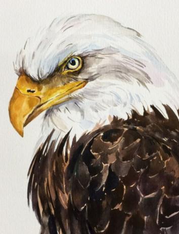 Орел и сова, Басня