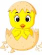 Космический цыпленок