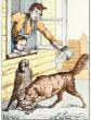 Собачья дружба, Басня