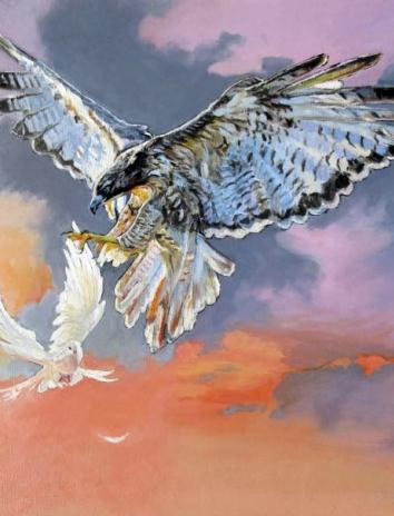Ястреб и голуби, Сказка