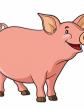 Свинья-сестра, Сказка