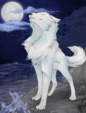 Сказка Белый волк, Французская сказка
