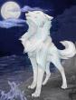Белый волк, Сказка