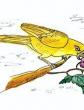 Болтливая птичка, Сказка