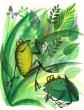Сказка Две лягушки, Японская народная сказка