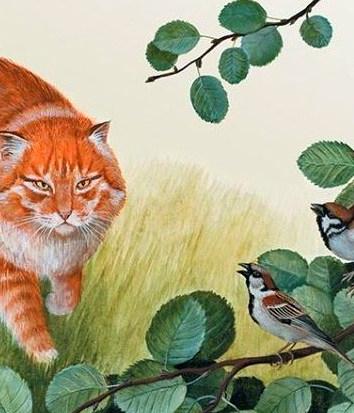 Как воробьи кошку перехитрили, Сказка