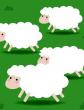 Пять овечек, Сказка