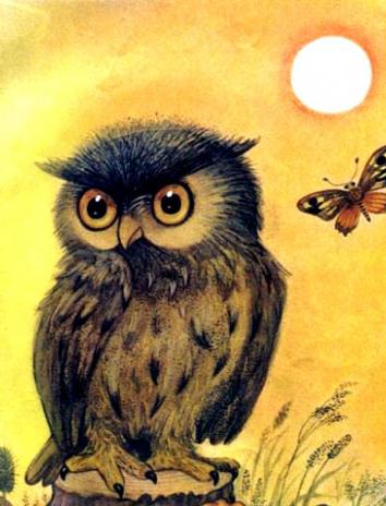 Сказка Совушка мудрая головушка, Польская народная сказка