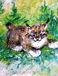Лесной котенок