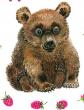 Медвежонок, Рассказ