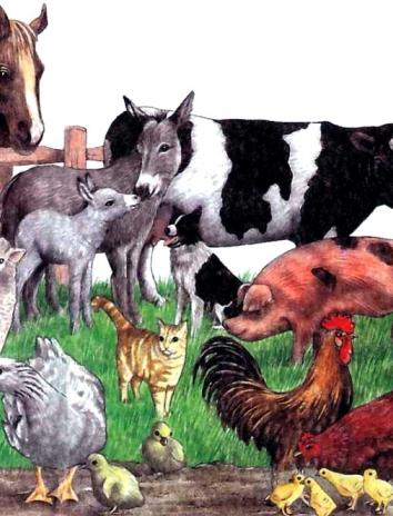 Спор животных, Сказка