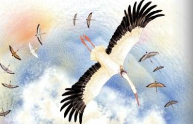 Чудесное путешествие Нильса с дикими гусями | Изображение - 23