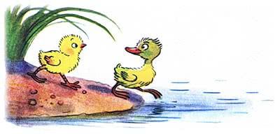 Цыплёнок и утёнок - Сутеев В.Г.