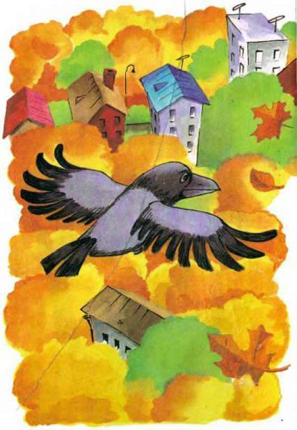 ворона над городом