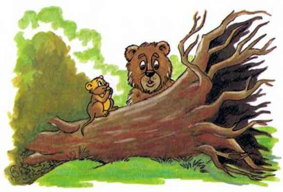 выкорчеванное дерево